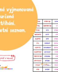Vyjmenovaná slova krozstříhání (1)
